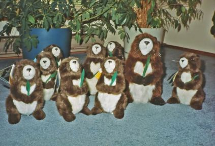 "Several, in fact. They have recently become ""ski bunnies"" and can be purchased through www.marmots.org"