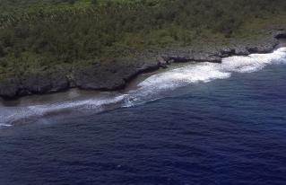 Makatea coastline, Atiu, Cook Islands, November 2000. © Andrew A Bryant