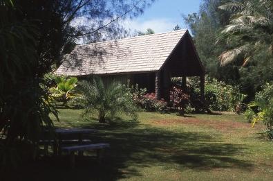 Atiu, Cook Islands, November 2000. © Andrew A Bryant