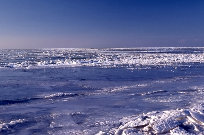 Sea ice, Resolute, NWT, 1979