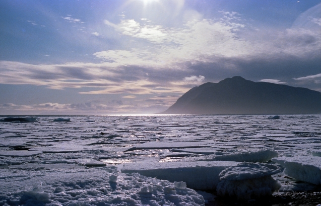 Grise Fiord, NWT, 1979