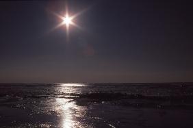 Sea ice, Resolute Bay, NWT, 1979